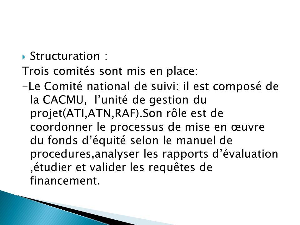 Structuration : Trois comités sont mis en place: