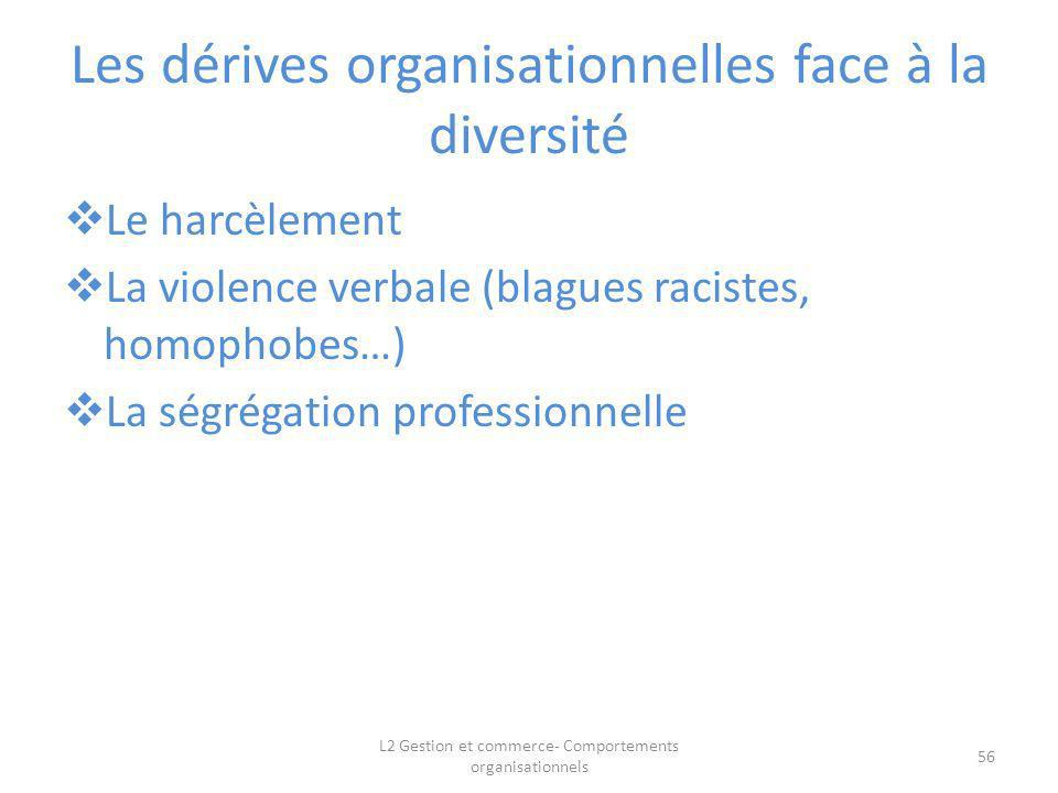 Les dérives organisationnelles face à la diversité