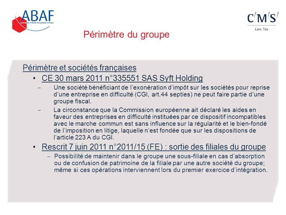 Périmètre du groupe CE 30 mars 2011 n°335551 SAS Syft Holding