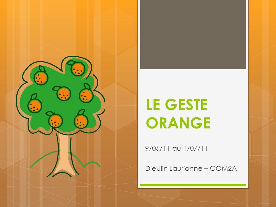 9/05/11 au 1/07/11 Dieulin Laurianne – COM2A