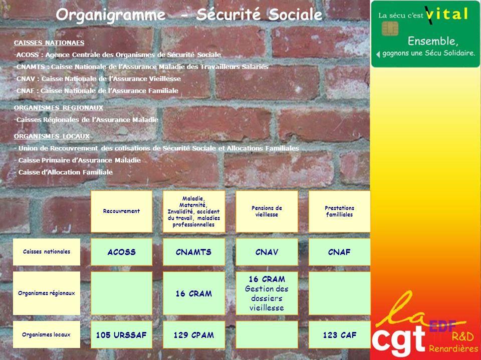 Organigramme - Sécurité Sociale