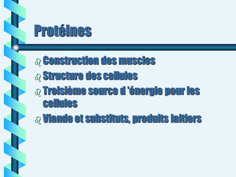 Protéines Construction des muscles Structure des cellules