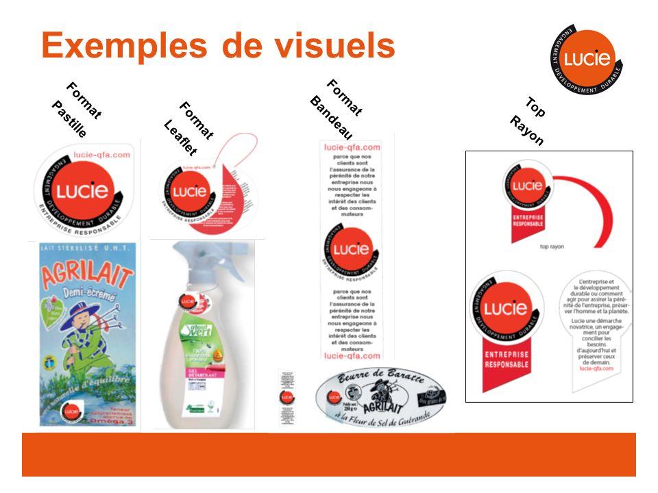 Exemples de visuels Format Format Pastille Bandeau Top Format Rayon