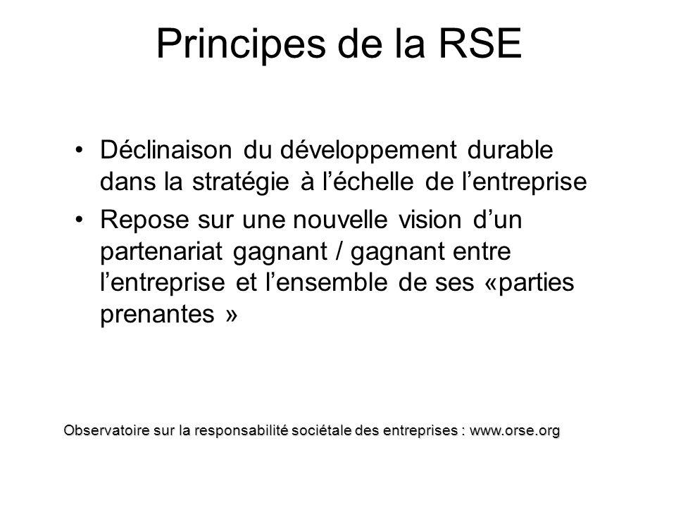Principes de la RSE Déclinaison du développement durable dans la stratégie à l'échelle de l'entreprise.