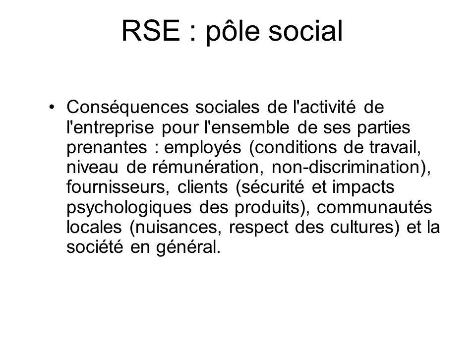 RSE : pôle social