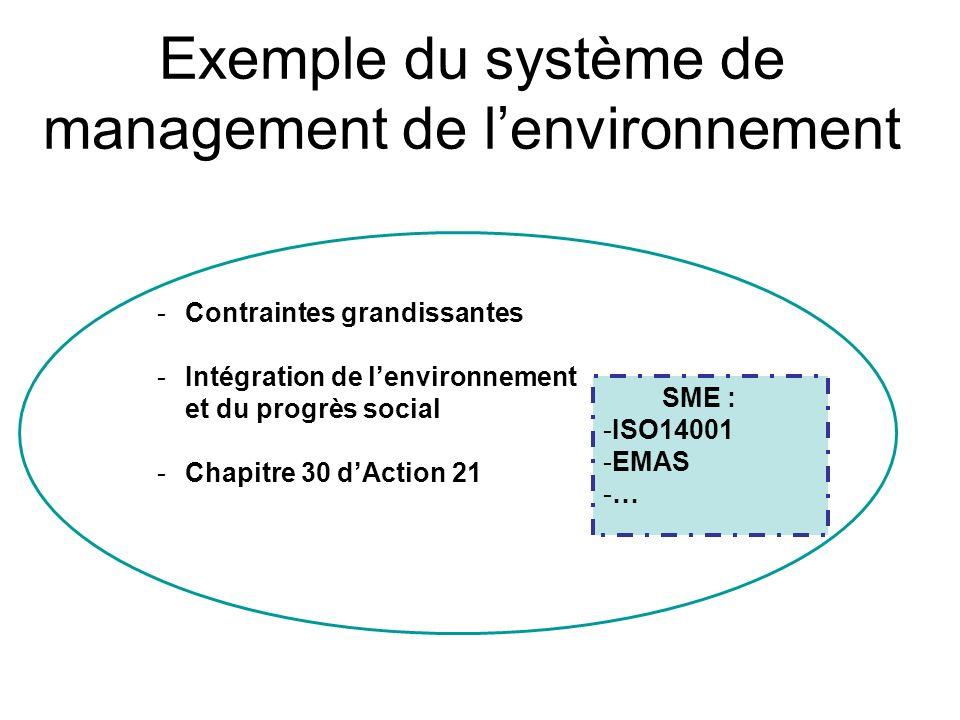Exemple du système de management de l'environnement