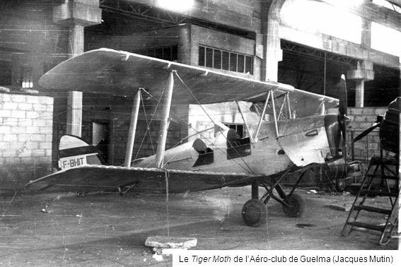 Le Tiger Moth de l'Aéro-club de Guelma (Jacques Mutin)