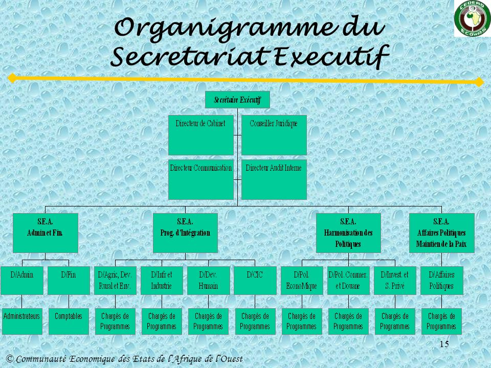 Organigramme du Secretariat Executif