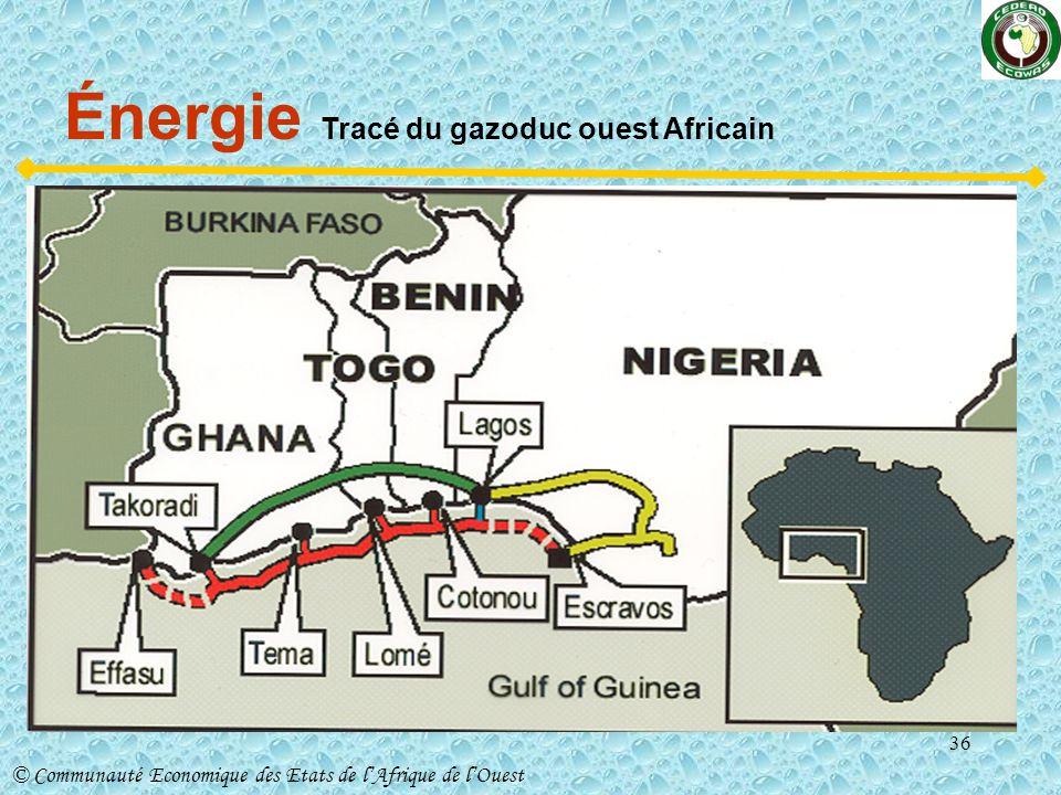 Énergie Tracé du gazoduc ouest Africain