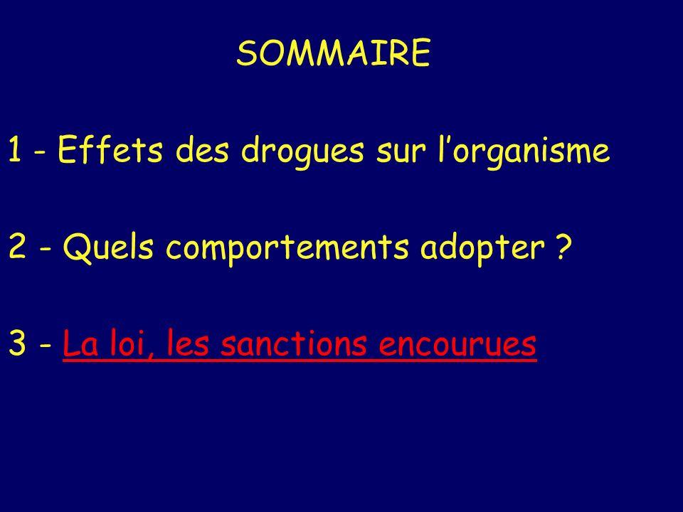 SOMMAIRE 1 - Effets des drogues sur l'organisme. 2 - Quels comportements adopter .