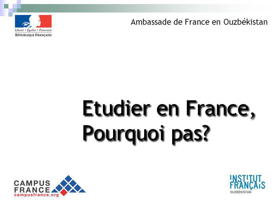 Etudier en France, Pourquoi pas