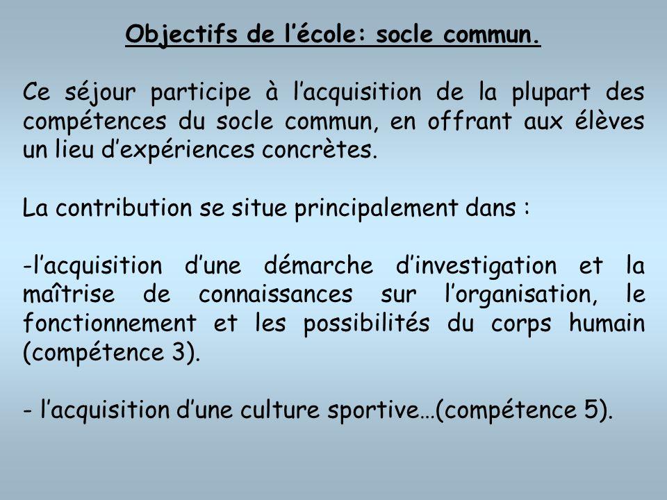 Objectifs de l'école: socle commun.