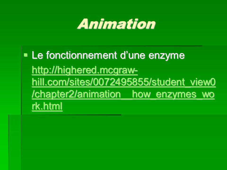 Animation Le fonctionnement d'une enzyme
