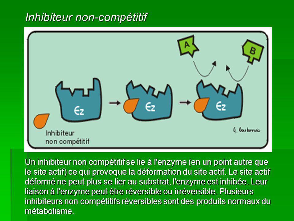 Inhibiteur non-compétitif