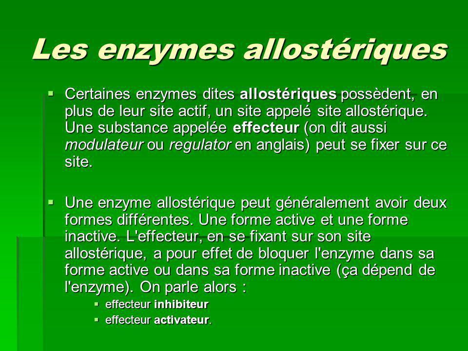 Les enzymes allostériques