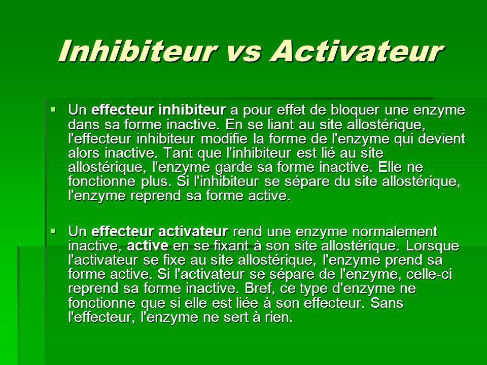 Inhibiteur vs Activateur