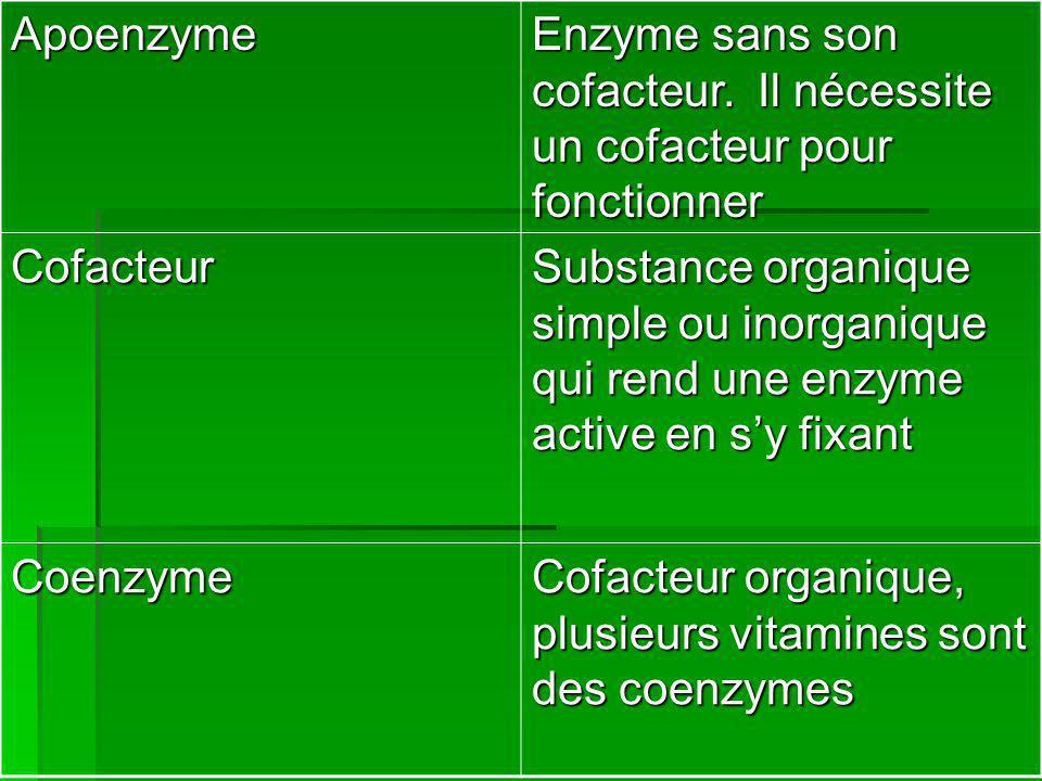 Apoenzyme Enzyme sans son cofacteur. Il nécessite un cofacteur pour fonctionner. Cofacteur.