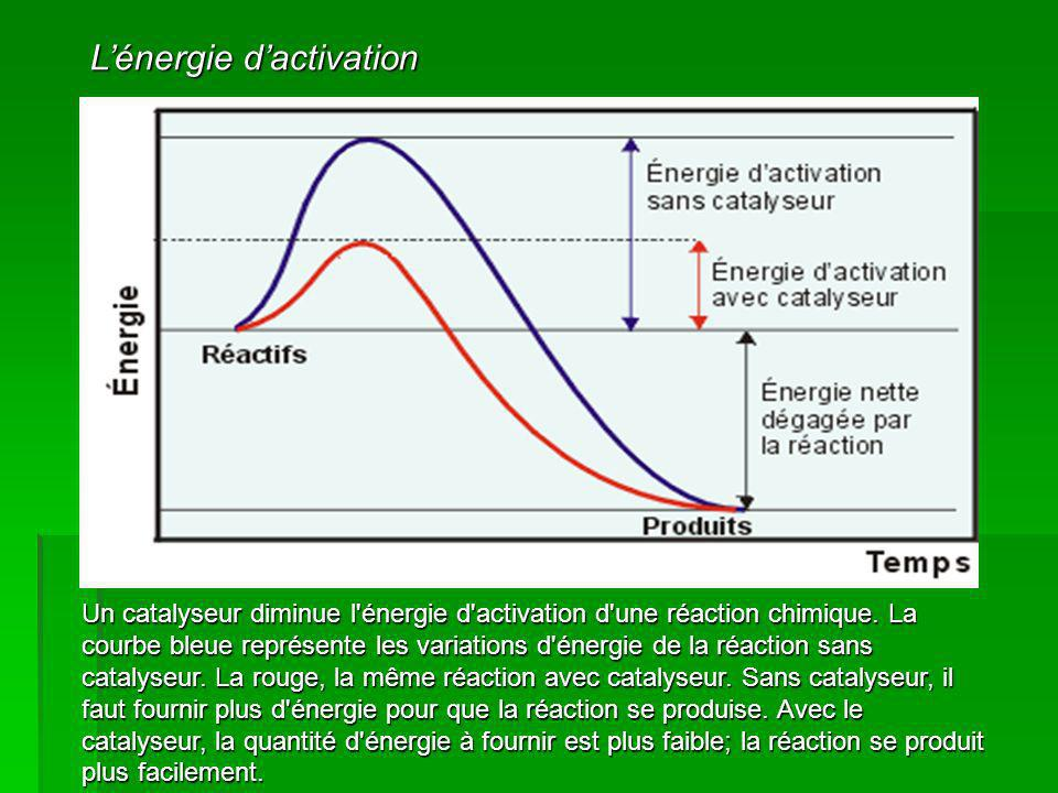 L'énergie d'activation