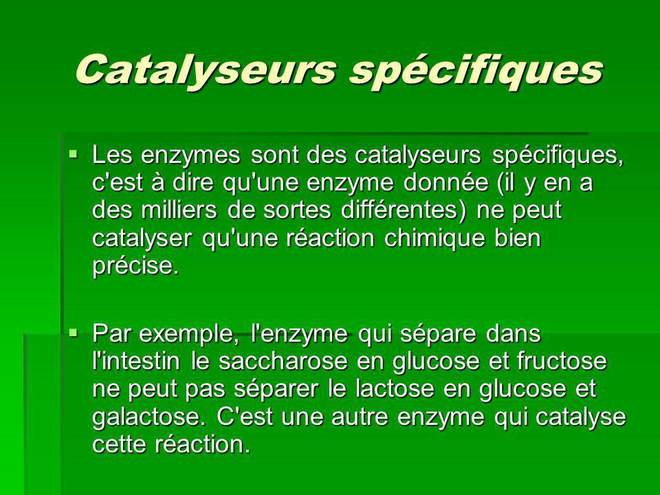 Catalyseurs spécifiques
