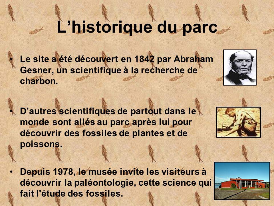 L'historique du parc Le site a été découvert en 1842 par Abraham Gesner, un scientifique à la recherche de charbon.