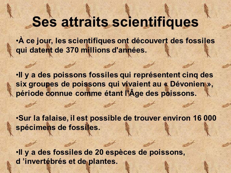 Ses attraits scientifiques