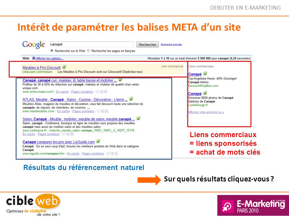 Intérêt de paramétrer les balises META d'un site