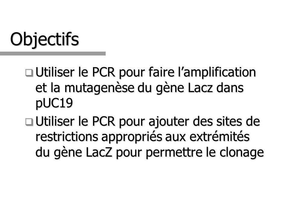 Objectifs Utiliser le PCR pour faire l'amplification et la mutagenèse du gène Lacz dans pUC19.