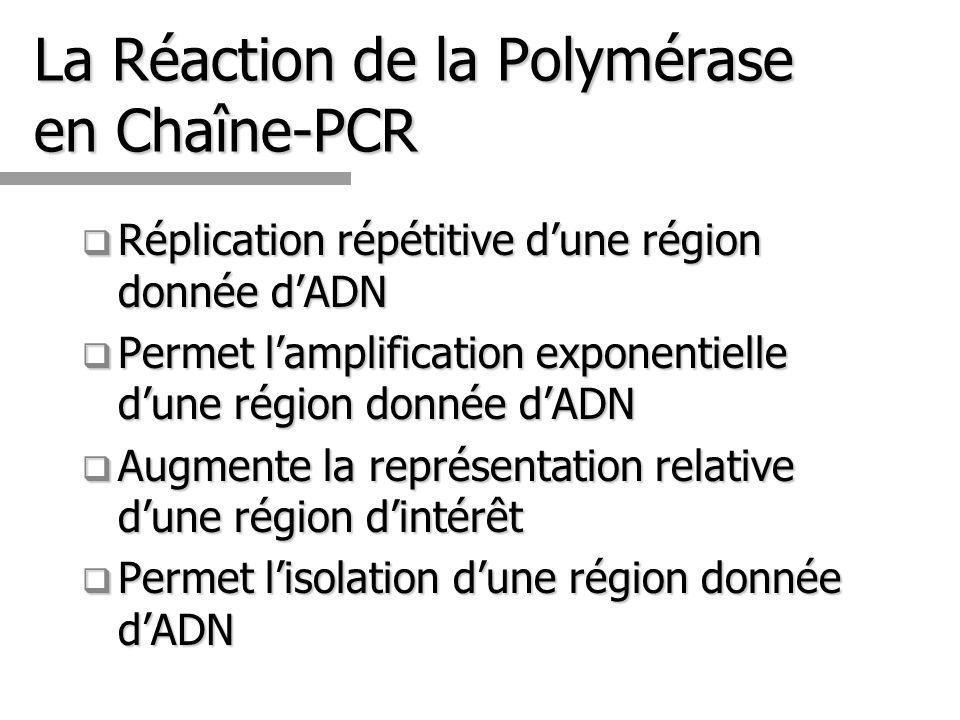 La Réaction de la Polymérase en Chaîne-PCR