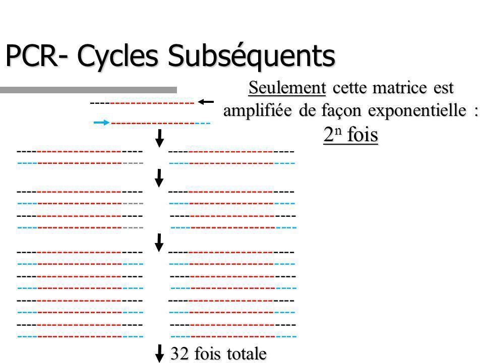 PCR- Cycles Subséquents