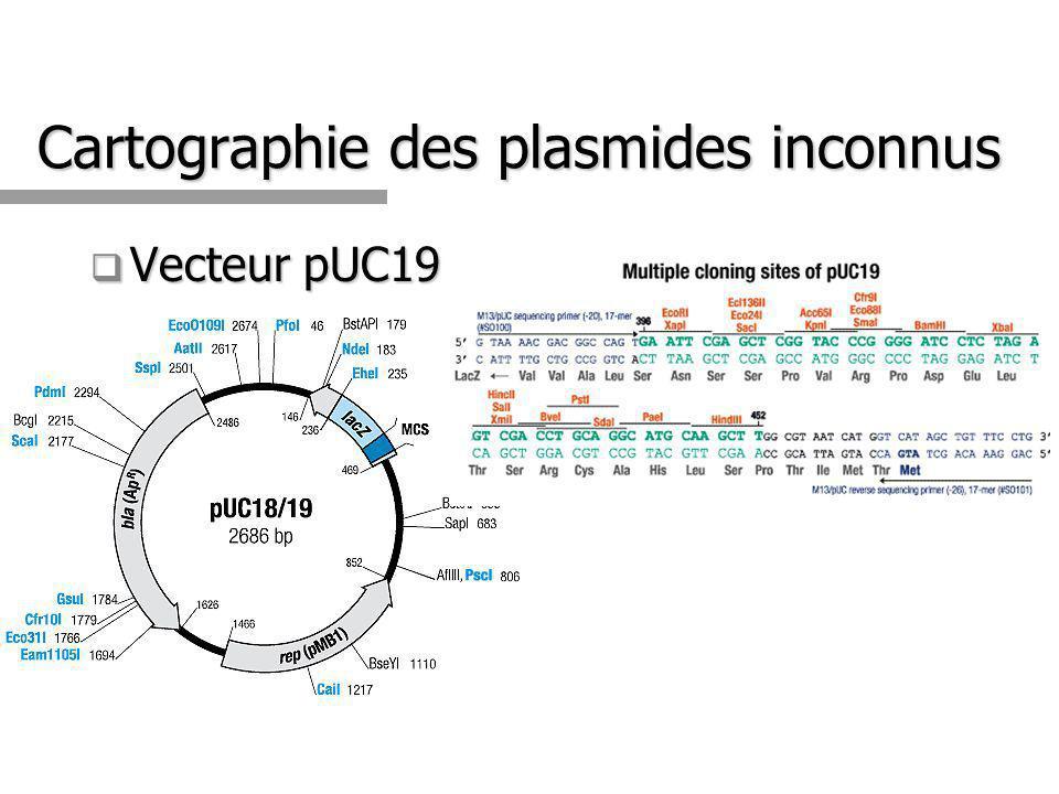 Cartographie des plasmides inconnus