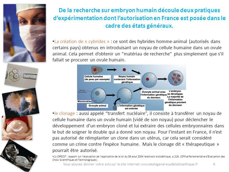De la recherche sur embryon humain découle deux pratiques d'expérimentation dont l'autorisation en France est posée dans le cadre des états généraux.