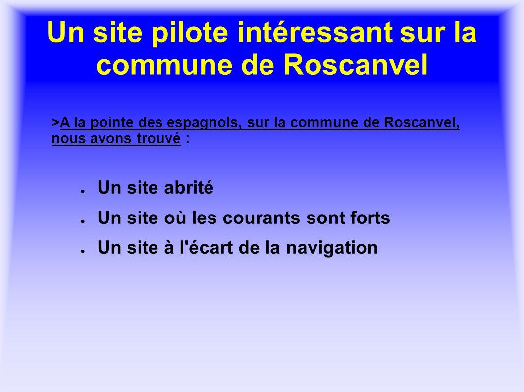 Un site pilote intéressant sur la commune de Roscanvel