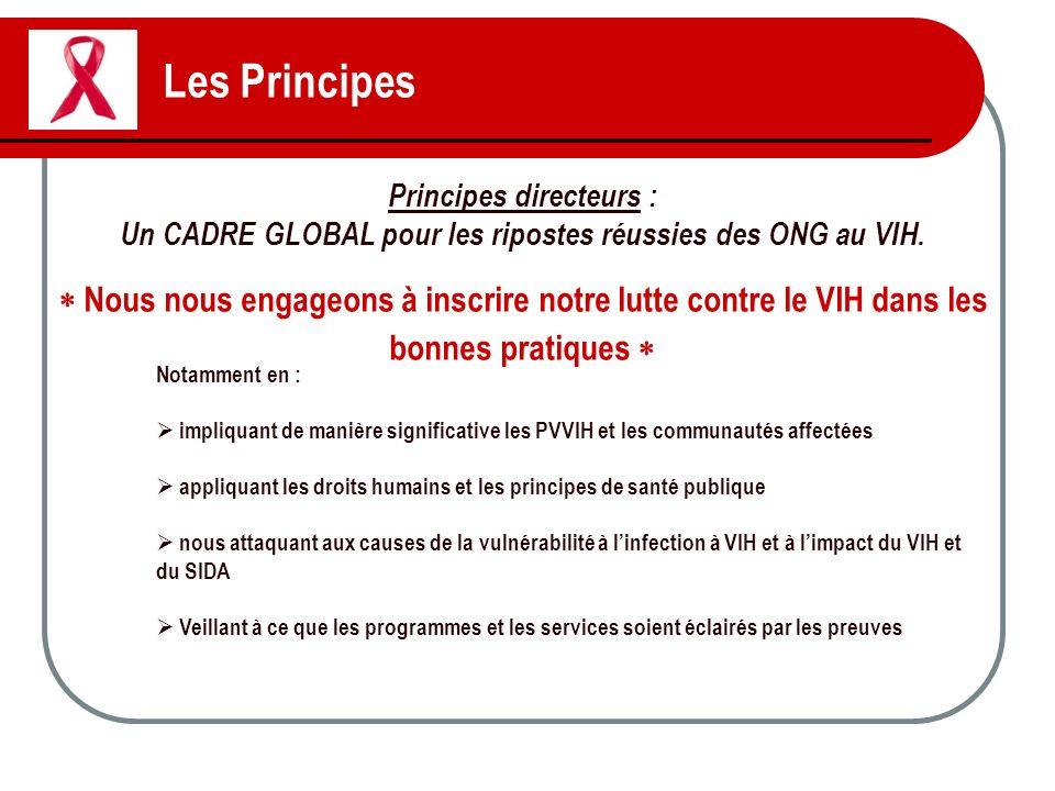 Les Principes Principes directeurs : Un CADRE GLOBAL pour les ripostes réussies des ONG au VIH.