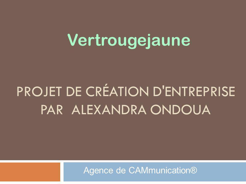 Projet de création d entreprise par Alexandra Ondoua