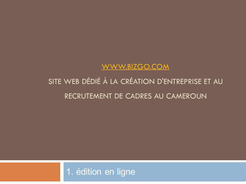 www.bizgo.com site Web dédié à la création d entreprise et au recrutement de cadres au Cameroun