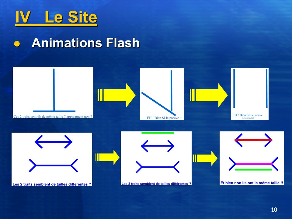IV Le Site Animations Flash