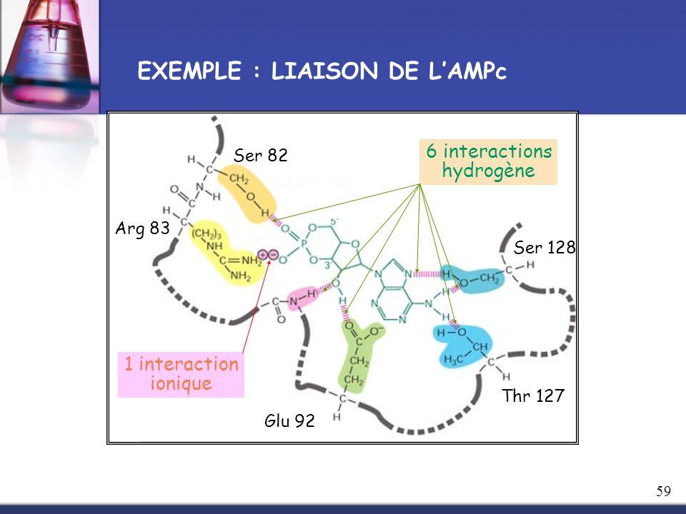 EXEMPLE : LIAISON DE L'AMPc
