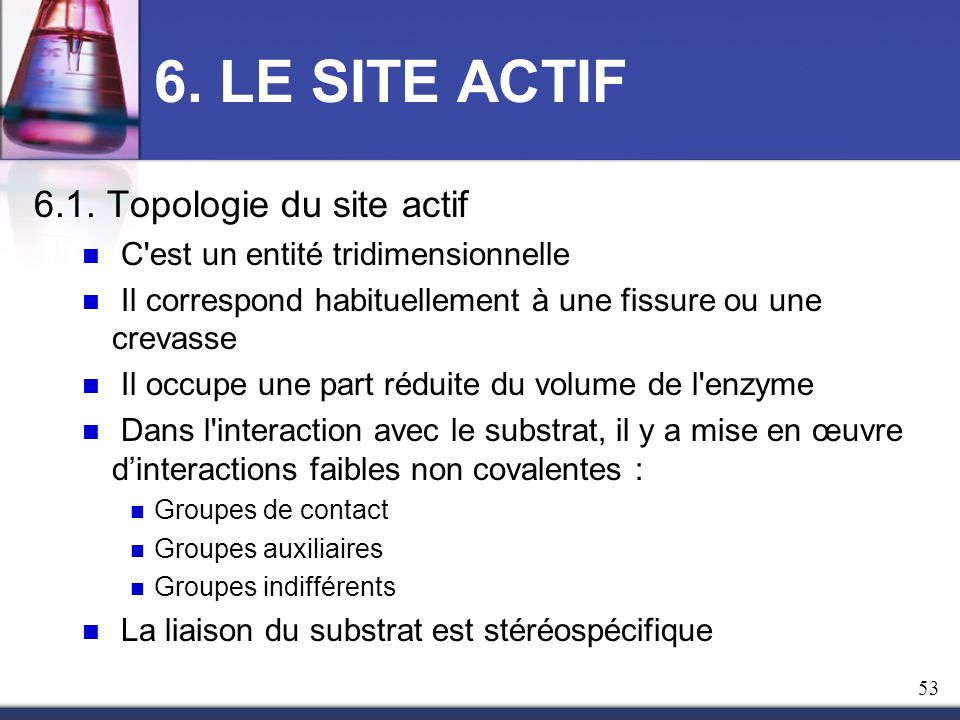 6. LE SITE ACTIF 6.1. Topologie du site actif