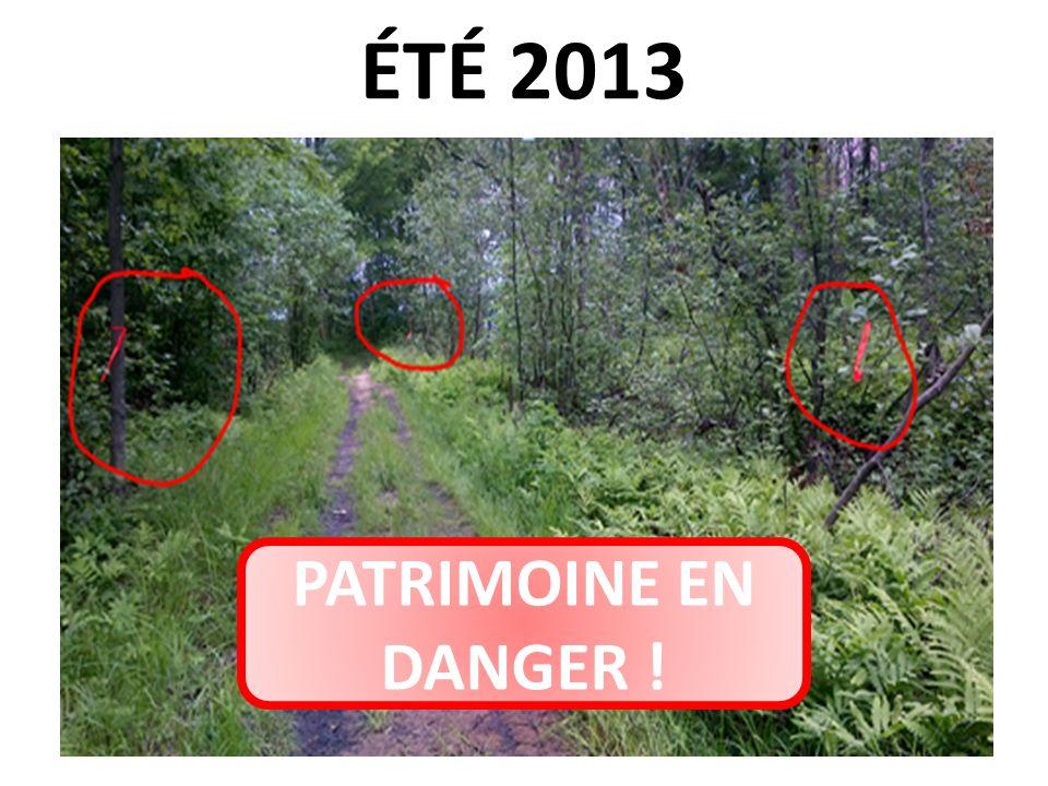 ÉTÉ 2013 PATRIMOINE EN DANGER !