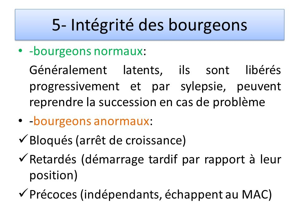 5- Intégrité des bourgeons