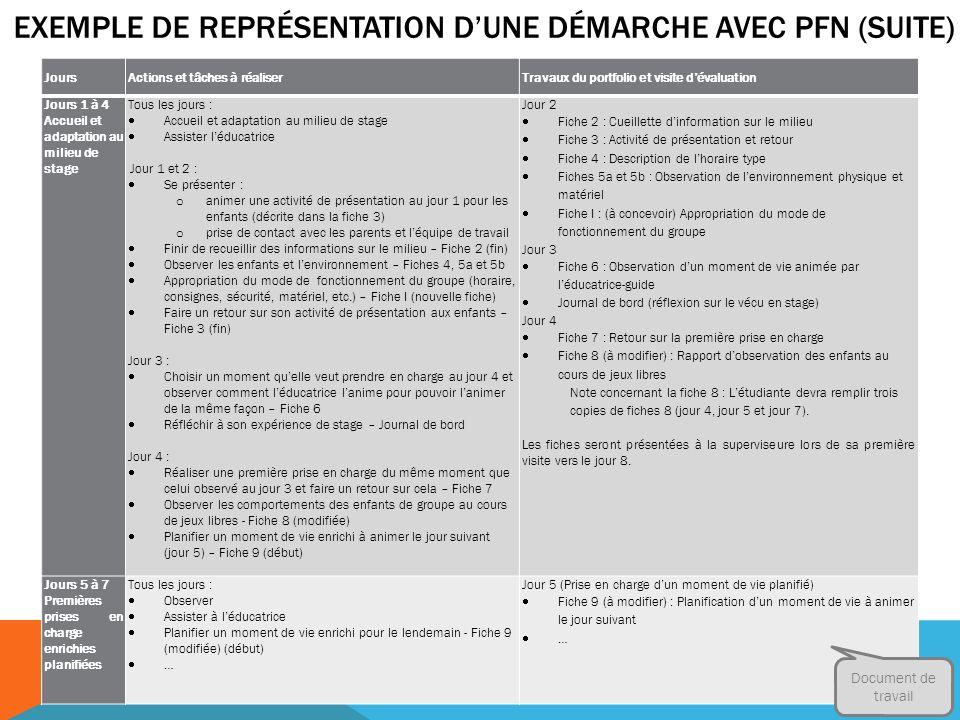 Exemple de représentation D'une démarche avec PFN (suite)