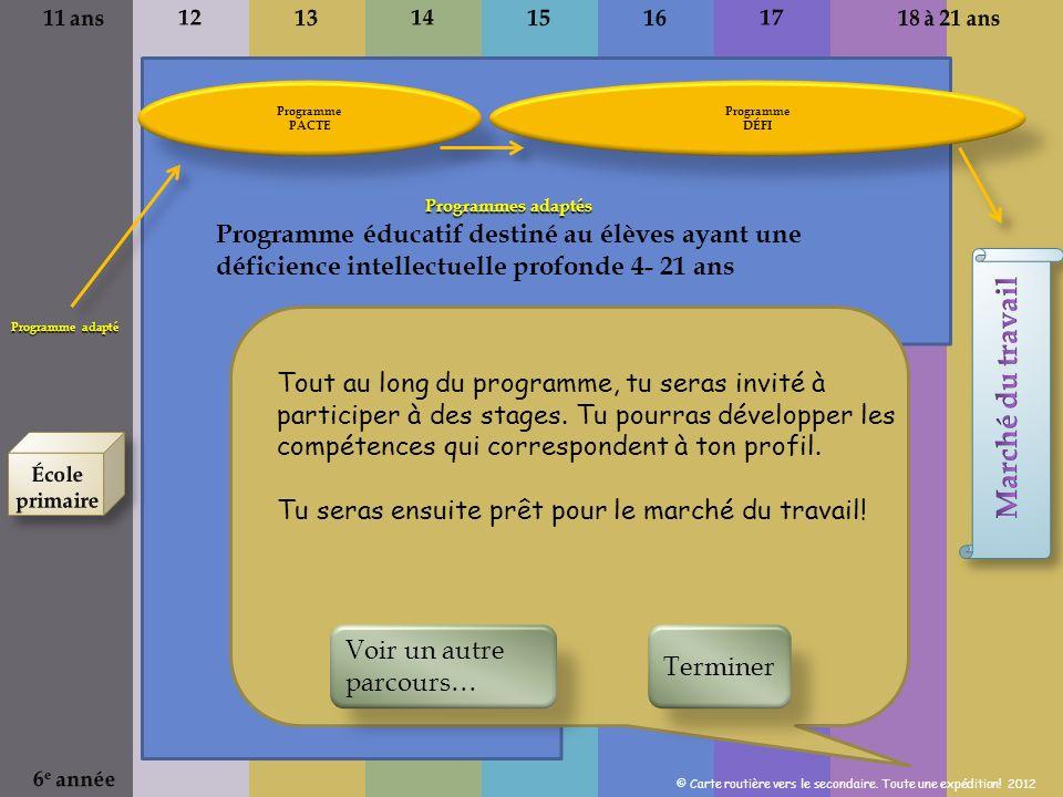 11 ans 12. 13. 14. 15. 16. 17. 18 à 21 ans. Programme. PACTE. Programme. DÉFI. Programme adapté.