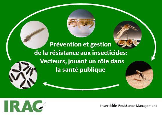 Prévention et gestion de la résistance aux insecticides: Vecteurs, jouant un rôle dans la santé publique