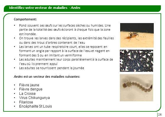 Identifiez votre vecteur de maladies - Aedes