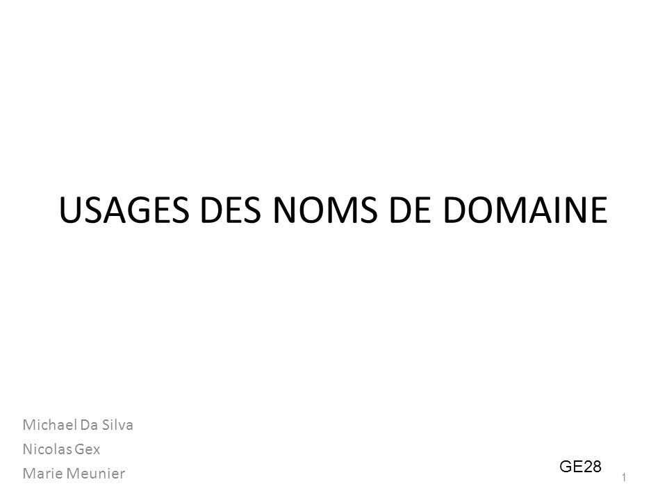 USAGES DES NOMS DE DOMAINE