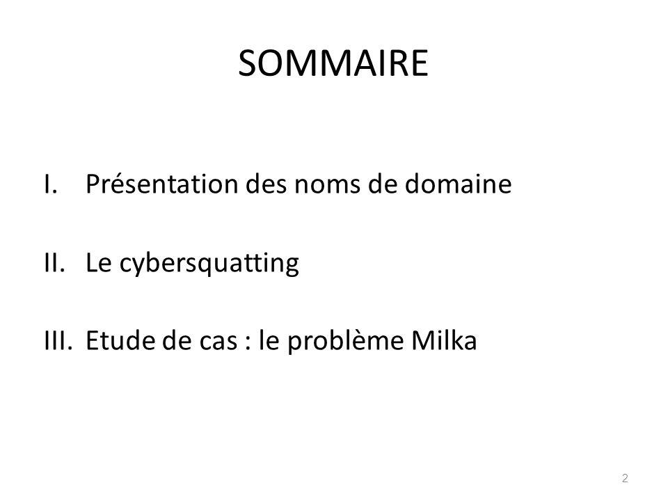 SOMMAIRE Présentation des noms de domaine Le cybersquatting