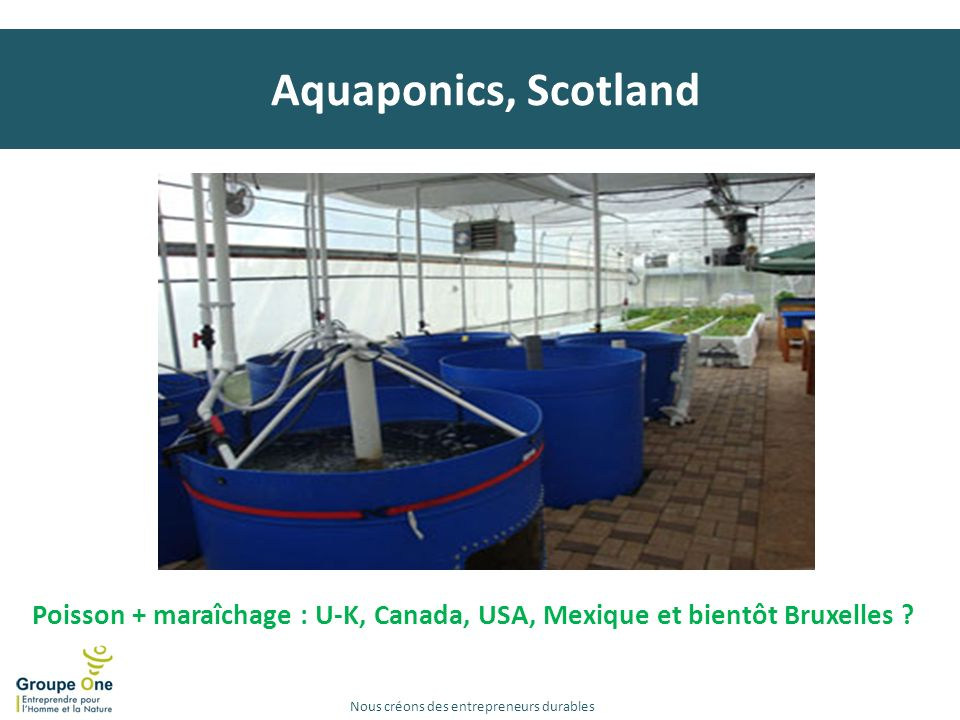 Aquaponics, Scotland Marqt (P-B)