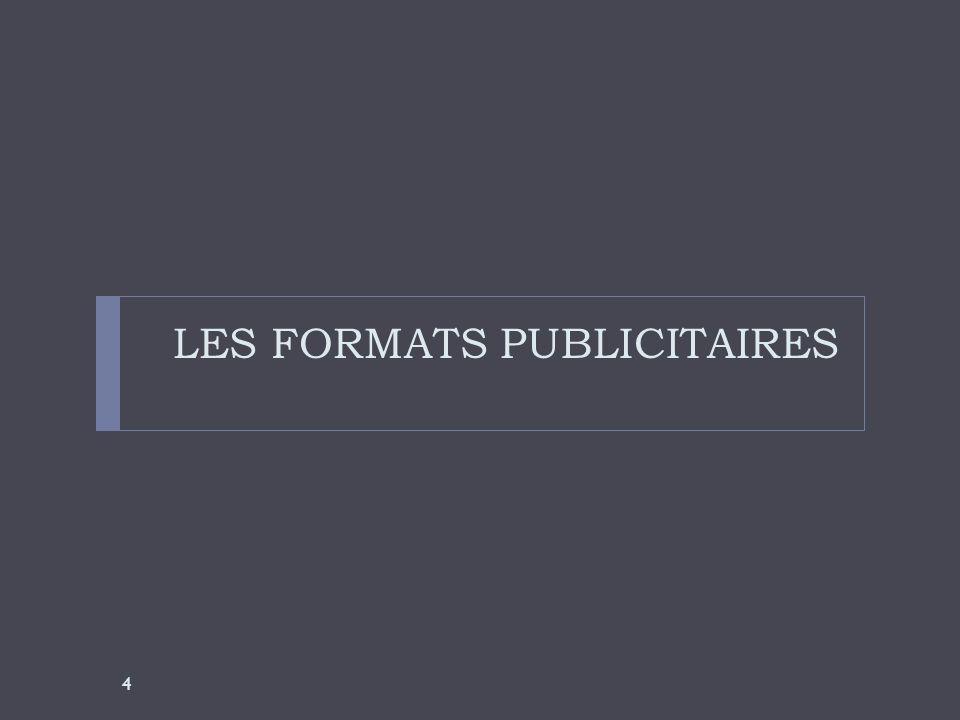 LES FORMATS PUBLICITAIRES