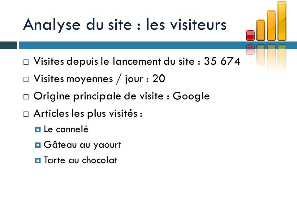 Analyse du site : les visiteurs
