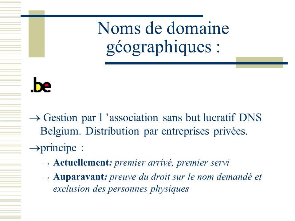 Noms de domaine géographiques :